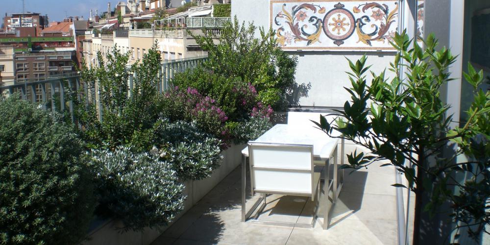Mantenimiento de jardines proyectos de jardineria en for Mantenimiento de jardines