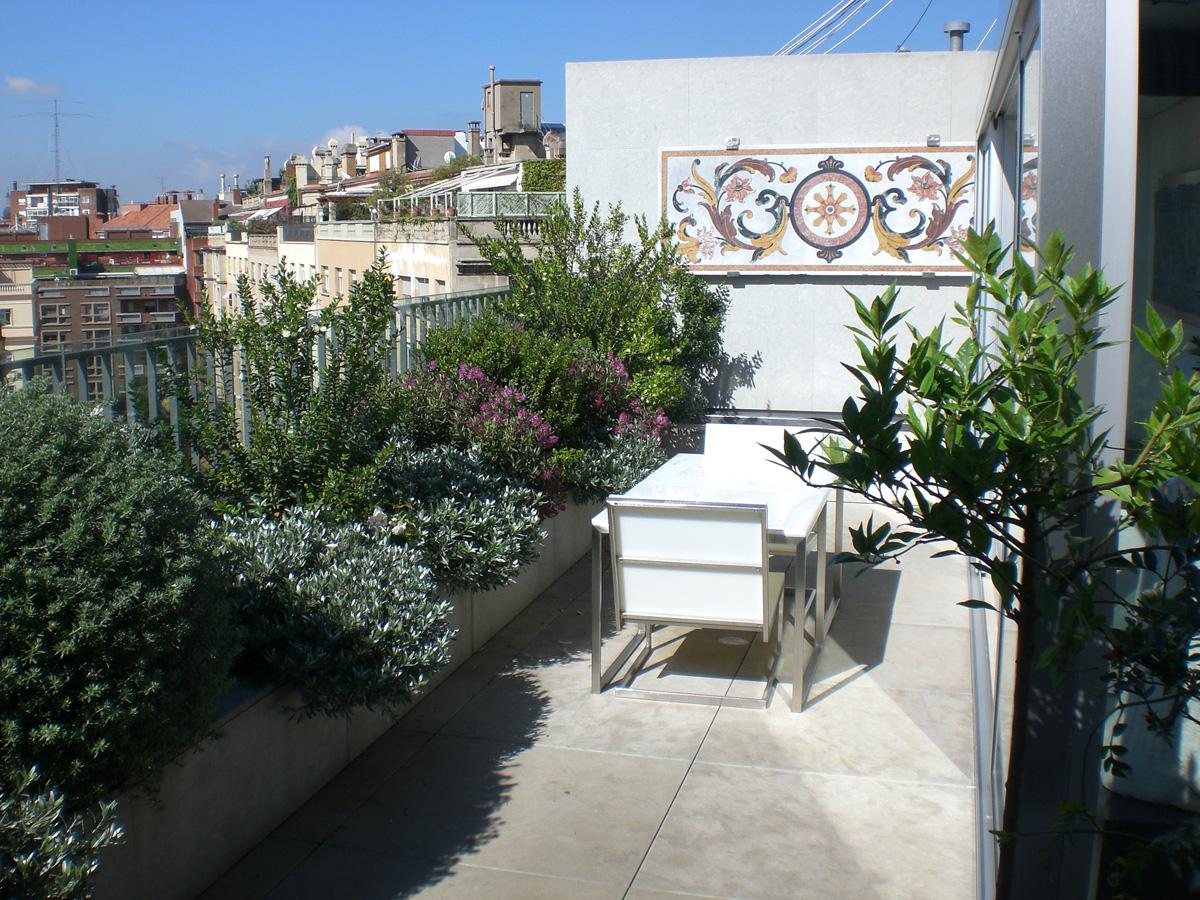 Mantenimiento de jardines proyectos de jardineria en - Mantenimiento de jardines ...